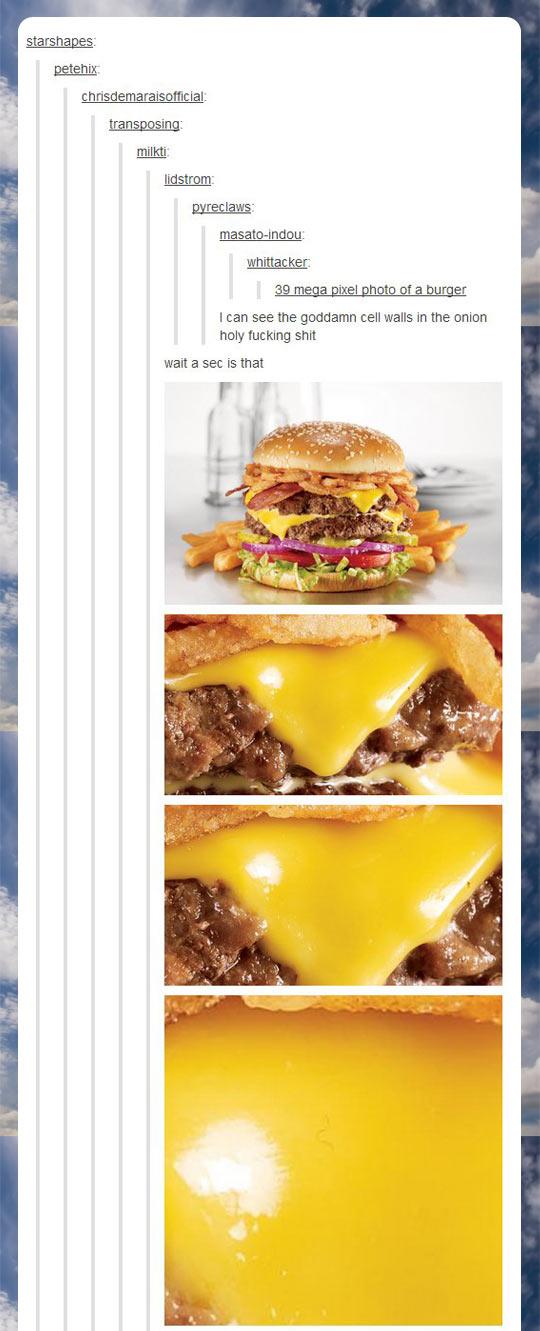 funny-burger-delicious-photo-pixel-zoom