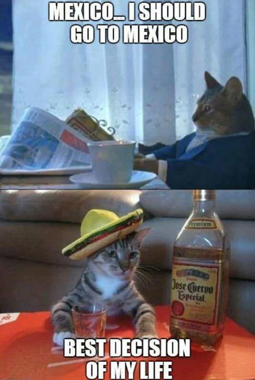 I should go to Mexico…