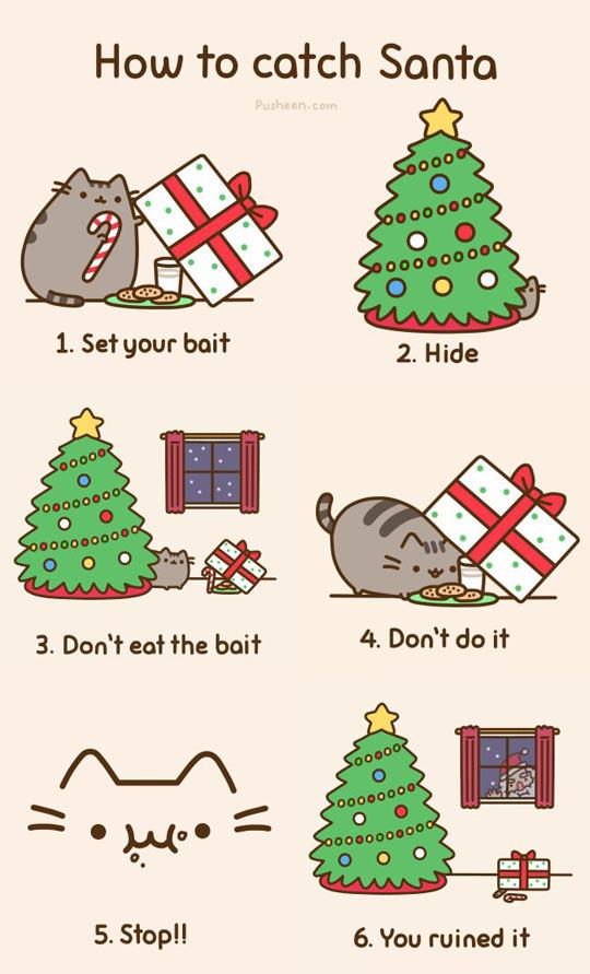 funny-cat-tramp-tree-Christmas-Santa