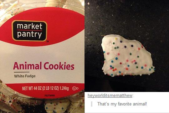 My favorite cookie animal…