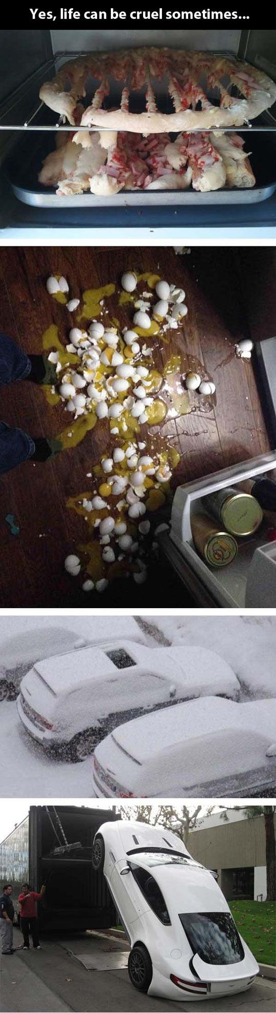 funny-cruel-life-pizza-eggs