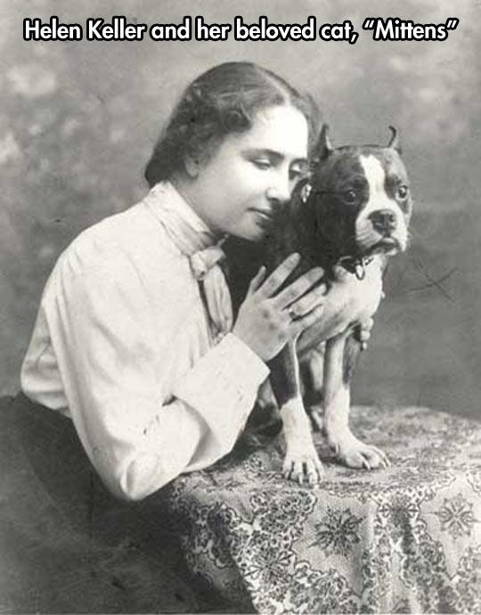 funny-dog-Helen-Keller-hug