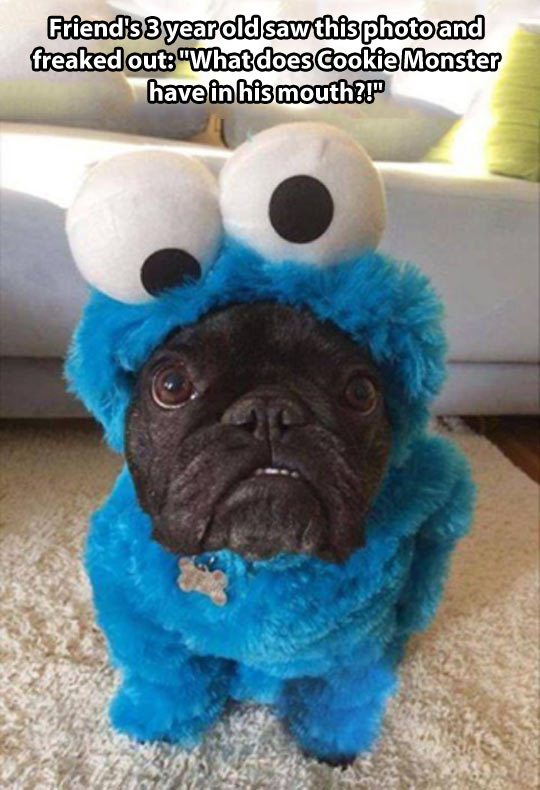 Strange Cookie Monster…
