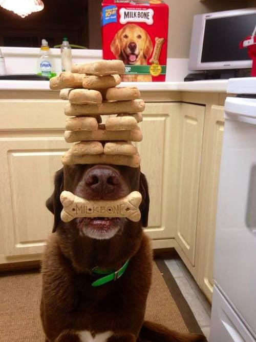 Maximum balance…