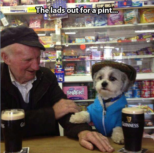 Don't you dare touch my Guinness…