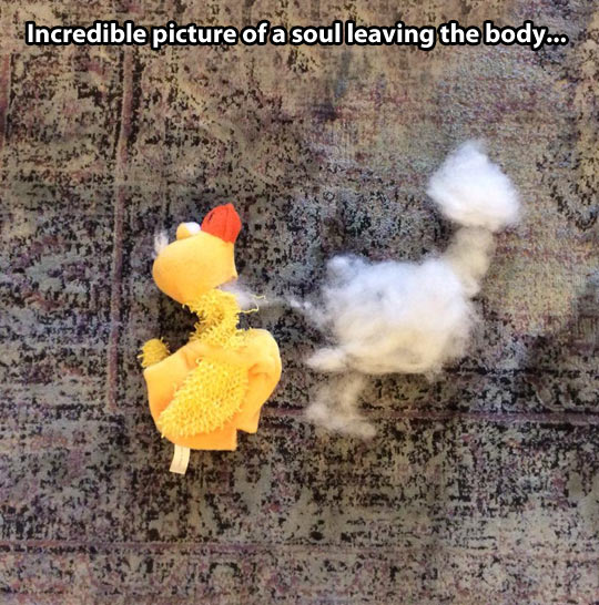 A soul leaving the body…