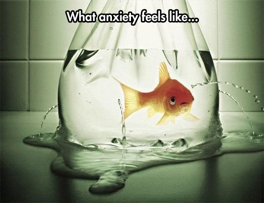 The way anxiety feels…