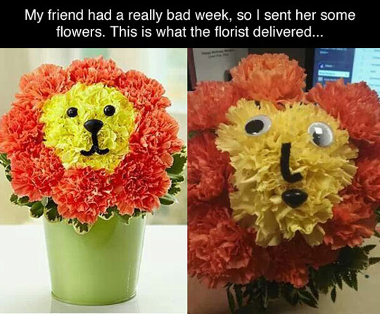 funny-flowers-lion-decoration-pot