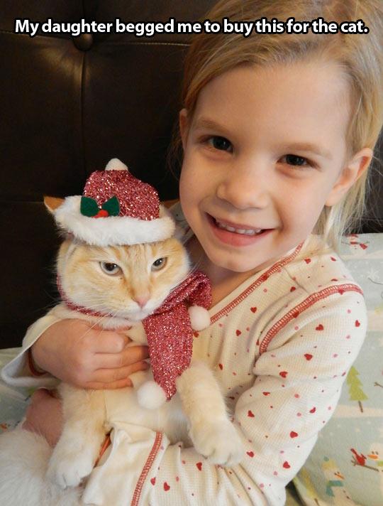 funny-girl-cat-dressed-Christmas