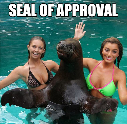 funny-girls-sea-seal-water-salute