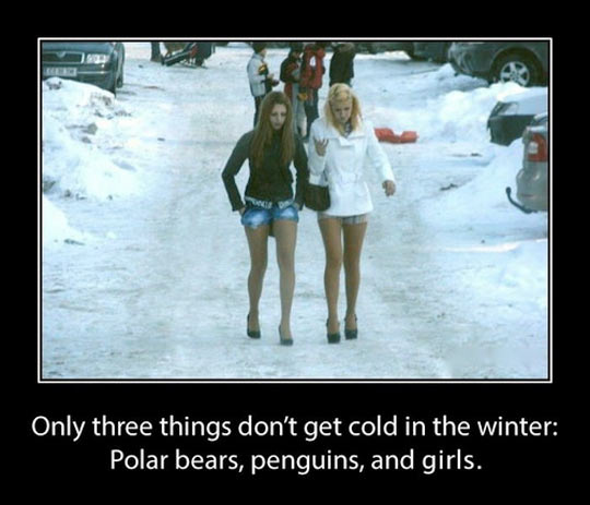 Things that don't get cold in the winter…