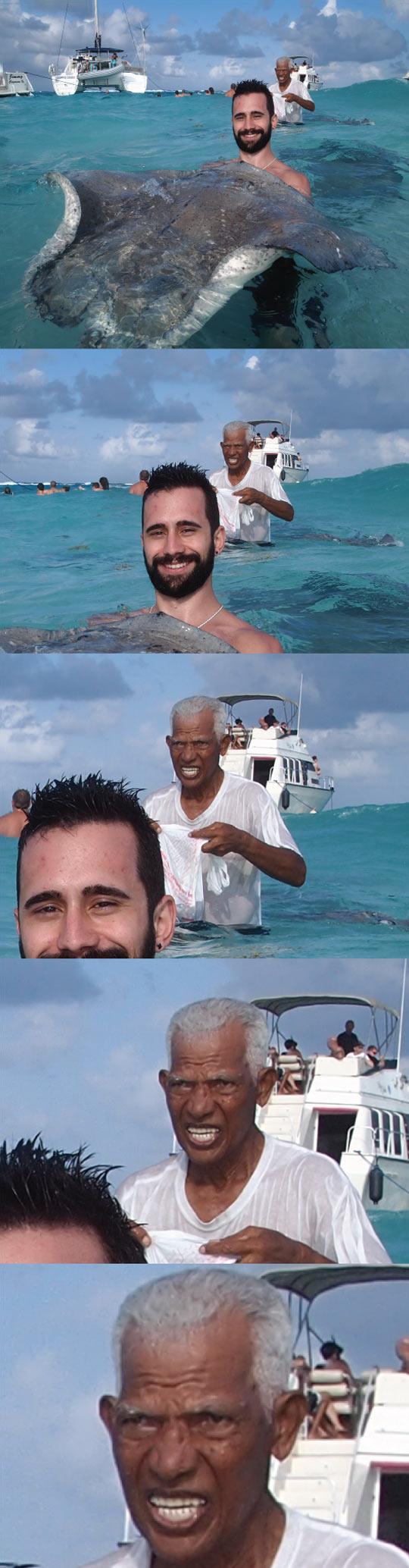 funny-guy-stingray-giant-sea-water