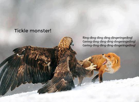 Tickle monster…