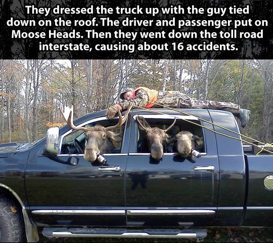 funny-hunter-moose-truck-forest-prank