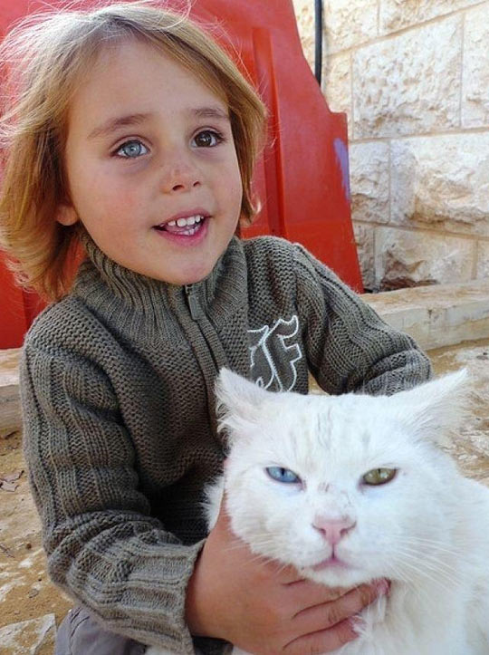 funny-kid-cat-eyes-colors
