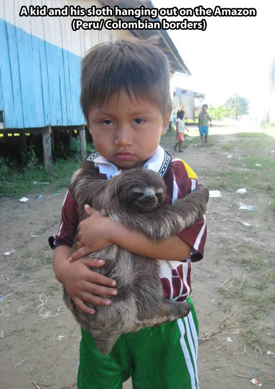 funny-kid-sloth-hug-jungle-house