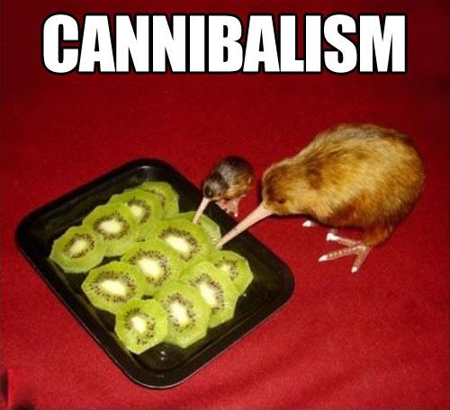 funny-kiwi-fruit-tray
