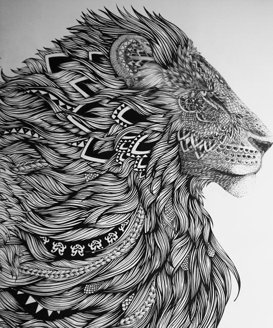 Majestic lion…
