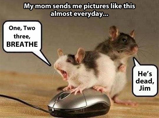 Things my mom sends me…