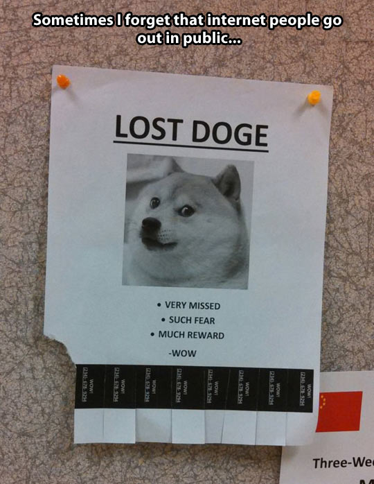 funny-paper-sign-lost-dog