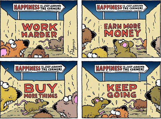 funny-rat-race-labyrinth-happiness-sign
