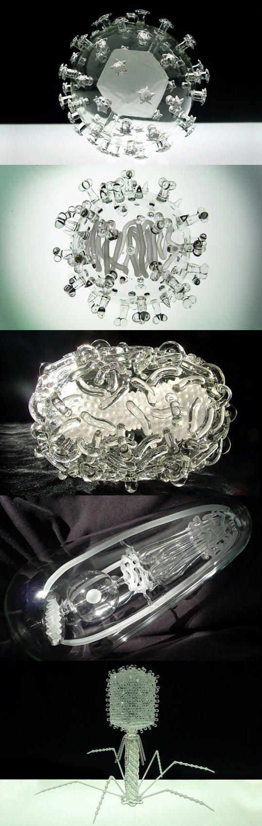 funny-sculpture-glass-virus-HIV-Flu-bacteria