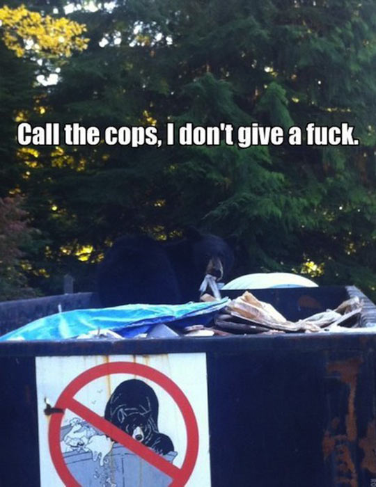 I don't care if you call the cops…