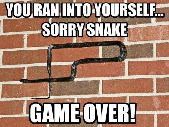 funny-snake-bricks-game-over