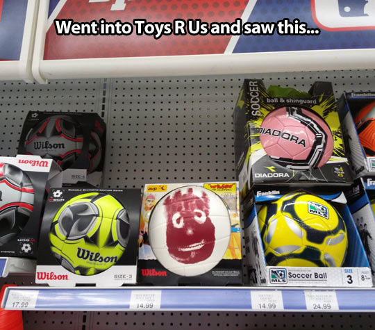 Toy stores have everything today…