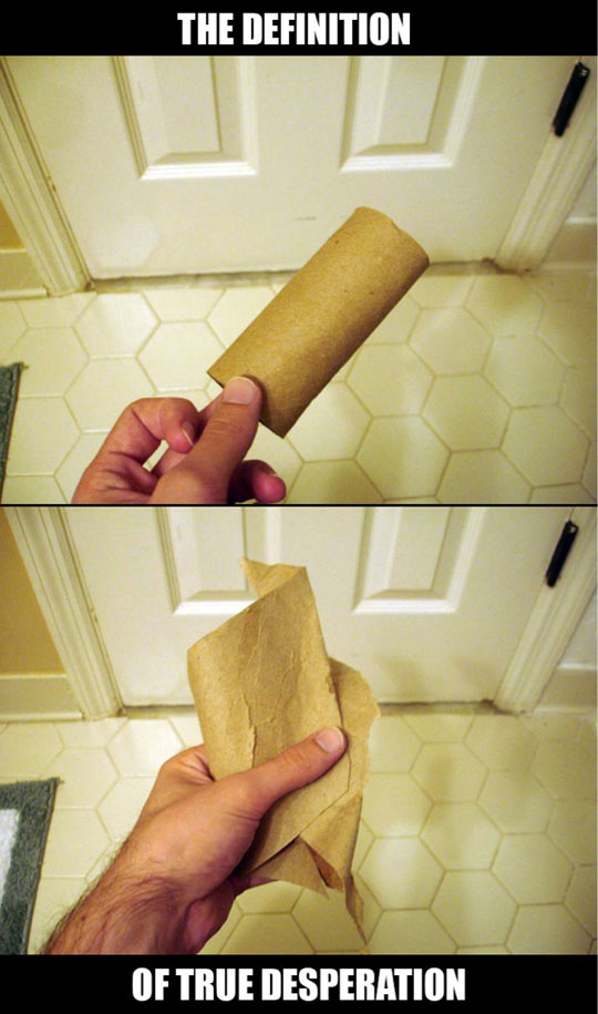 funny-toilet-paper-desperation-definition