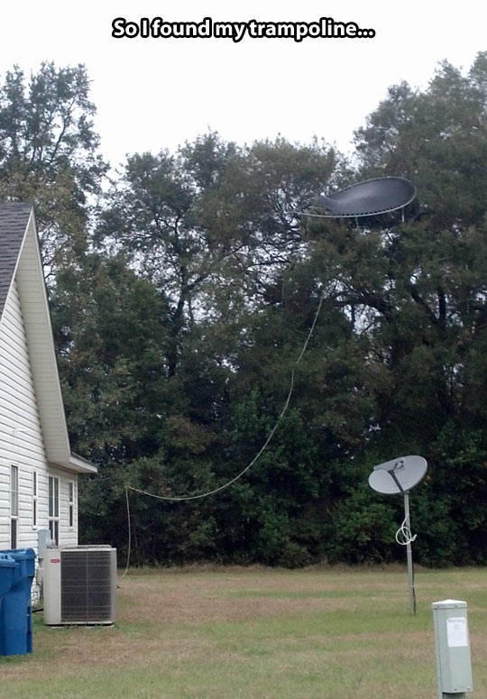 funny-trampoline-tree-house-forest