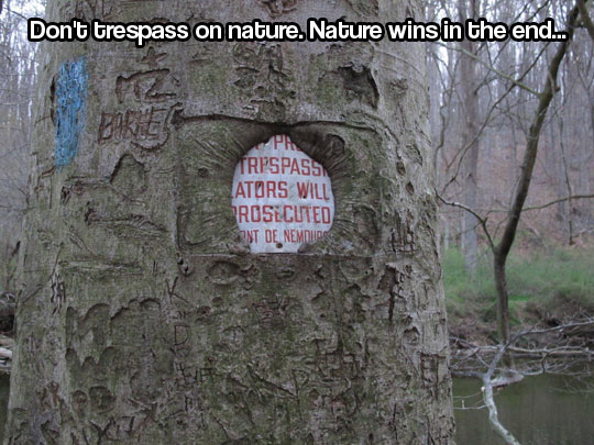 Nature wins in the end…