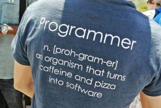 Meaning of programmer…