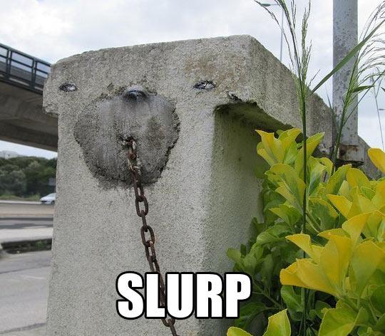 Slurp…