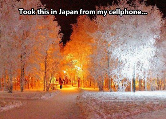 Japan landscape in winter…