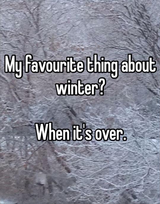 funny-winter-favorite-thing-season