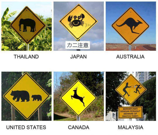 Different road signs around the world…
