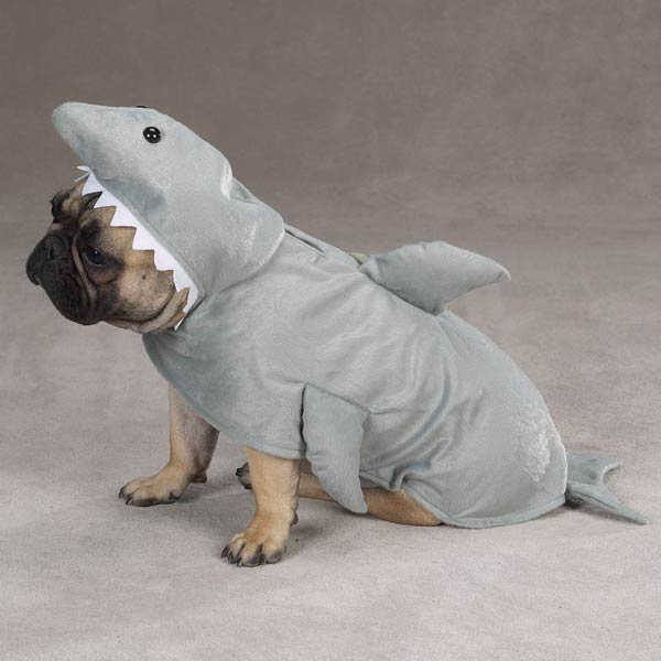 21 Dogs Dressed as Other Animals for Halloween12