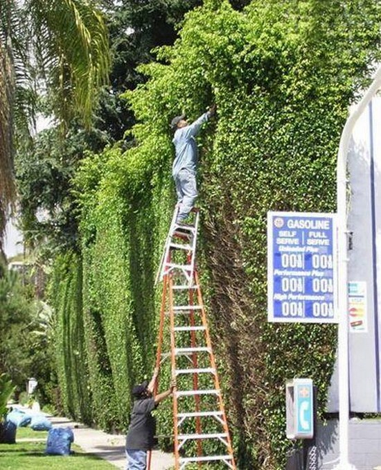 23-People-Who-Dont-Think-About-Safety-020