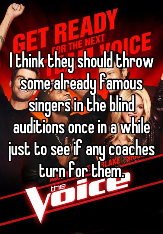A very good idea for The Voice