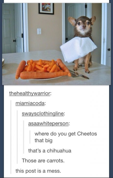 Seriously though, those Cheetos are huge