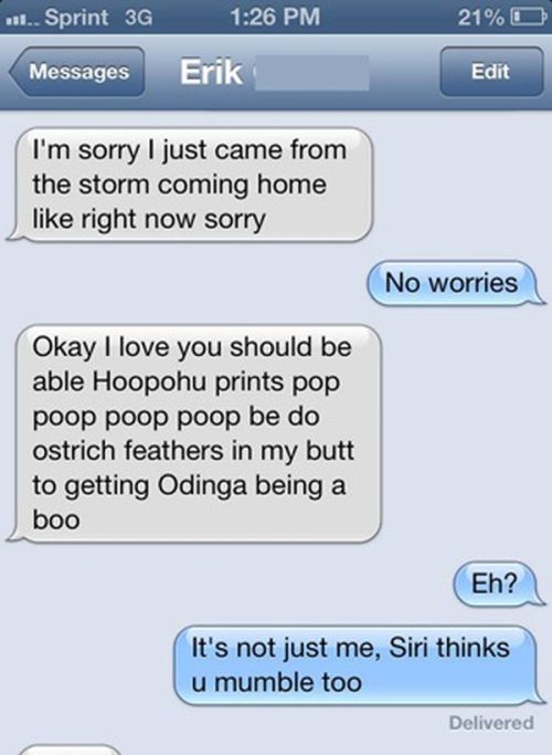 Texting Wins And Fails (28 Photos)4