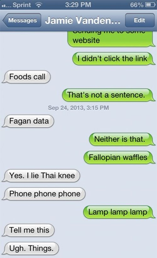 Texting Wins And Fails (28 Photos)5
