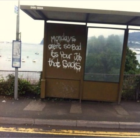 The wise graffiti is wise
