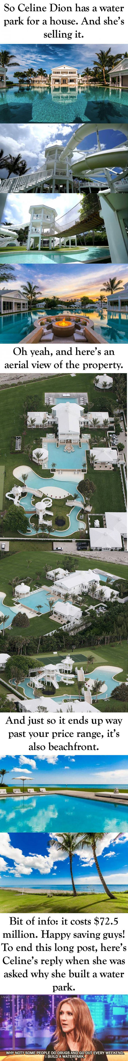 cool-Celine-Dion-water-park-house