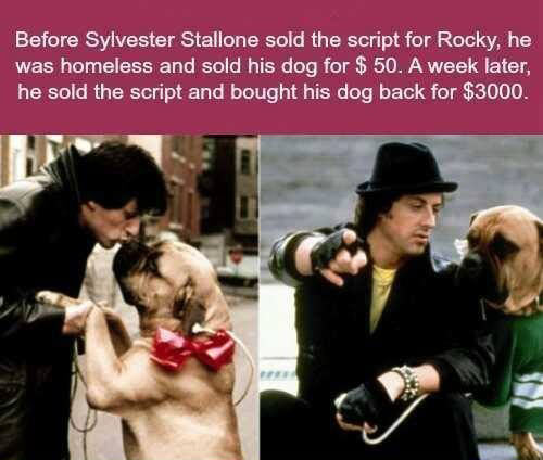 Sylvester Stallone is a great man…