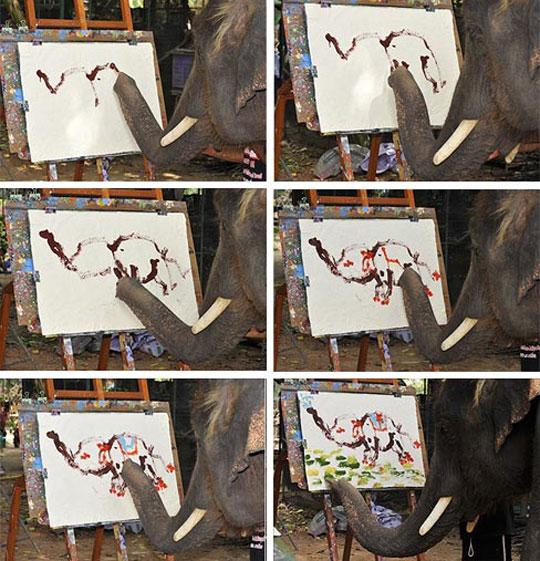 cool-elephant-painting-animal-canvas