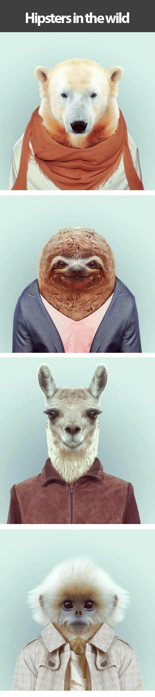Animals who wear it better...