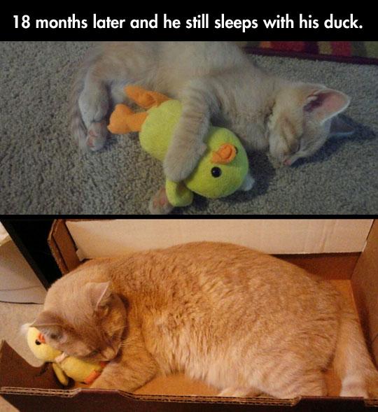 The cutest friendship…