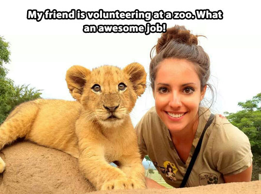 cute-girl-volunteer-zoo-baby-lion